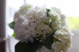 Aparté fleuri